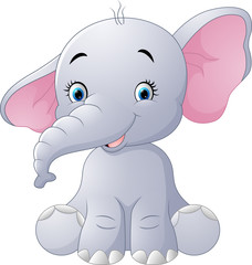 Cute baby elephant sitting isolated on white background