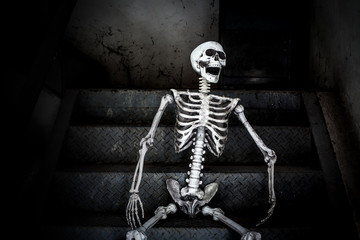 Still life, Human skeleton sitting on the stairs and laughing, in scary abandoned building.