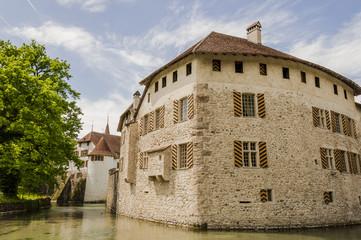Hallwyl, Schloss, Wasserschloss, Burg, Hallwilersee, See, Spazierweg, Insel, Aargau, Frühling, Sommer, Schweiz