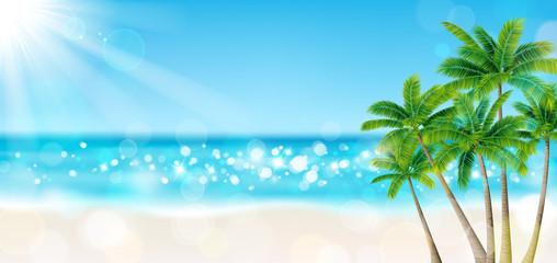 海 砂浜 太陽 ヤシの木