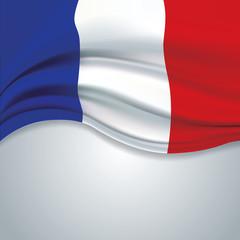 Vector france flag