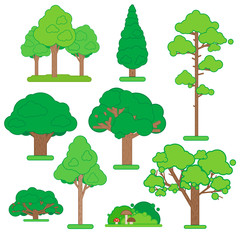 Set Of Green Trees and Shrubs on White Background. Vector Illustration.