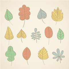 vector set of autumn leave drawn design elements
