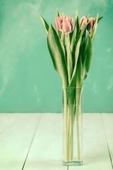 Wet Pink Tulip Flowers In Vase