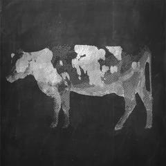 Cow. Farm animal. Vintage engraved illustration on chalkboard background.