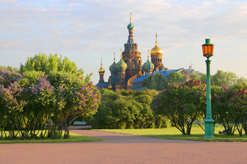 """Saint-Petersburg. Russia. View of orthodox Church of the Savior on Blood (""""Spas na Krovi"""")  from the Field of Mars"""