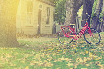 red bicycle in garden