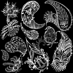 Set of decorative floral elements of beautiful paisley henna design Vector Illustration