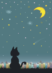 Night sky with crescent moon and city.   Silhouette of cat outdoor.