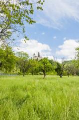 Arlesheim, Dorf, Burg, Schloss Birseck, Birseck, Dornach, Baselland, Bristal, Wanderweg, Ermitag, Frühling, Sommer, Schweiz