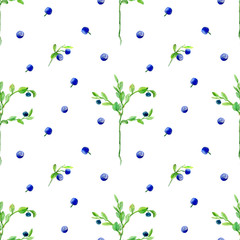 Berry seamless pattern.Blueberry.Watercolor hand drawn illustration.White background.