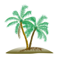 Vector Illustration of Two Palm Trees