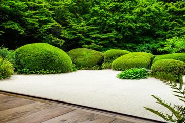 京都 新緑の詩仙堂