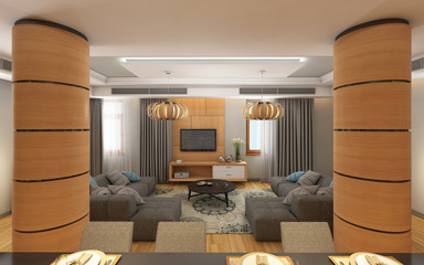 Living Room with Two Sofas