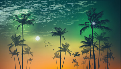 Wall Mural - Exotic tropical palm trees  at sunset or moonlight, with cloudy sky. Highly detailed  and editable