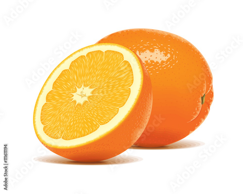 """Slice Half realistic orange fruit citrus vector"" Stock ..."