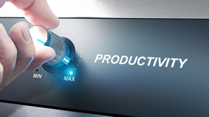 Productivity Management and Improvement