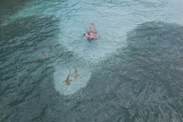 Jagende Haie am Strand mit neugieriger Schnorchlerin