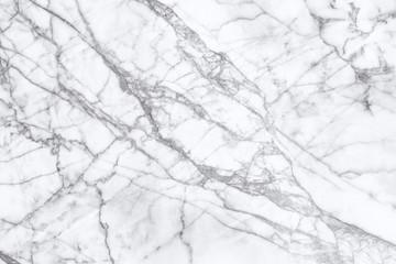 White marble floor background.