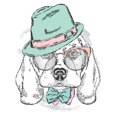 Cute puppy wearing a hat , sunglasses and a tie . Vector . portrait of a dog for postcards, prints on clothes or accessories .