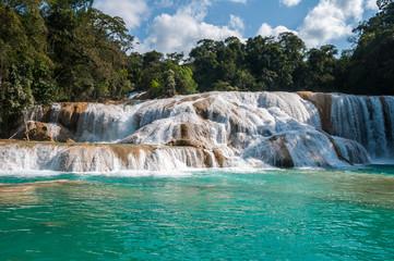 Poster Cascade Agua Azul waterfalls, Chiapas, Mexico