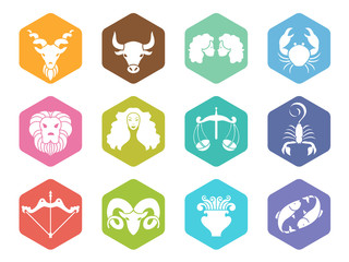 zodiac sign icon on hexagon vector set design