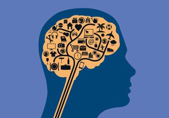 Cerveau - Activités