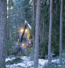 Mid adult man driving crane in trees
