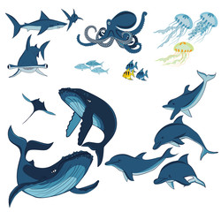 marine animals and fish