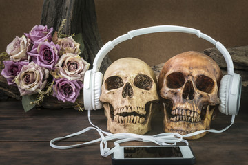 still life painting photography with couple skull listening to music with headphone on flower and timber background