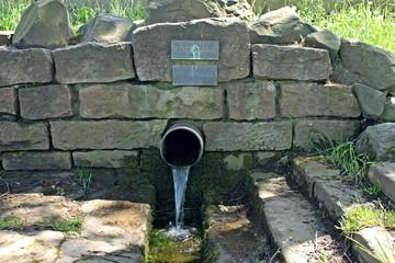 Die Kinzig-Quelle in Sterbfritz