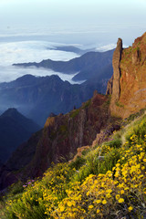 Alpine sunset light in Madeira Island, Portugal, Europe
