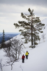 Skiers climbing a mountain, Sweden.