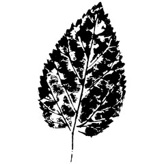 leaves imprint, sheet printing