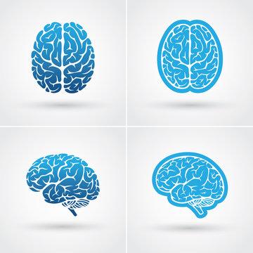 Four brain icons