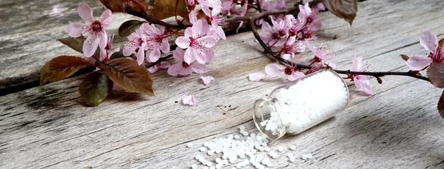 Banner Globuli mit Blüten auf rustikalem Tisch