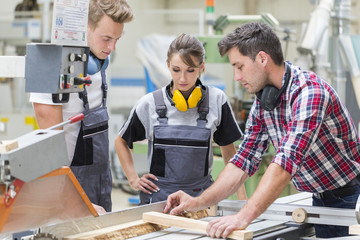 young apprentice with professional carpenter