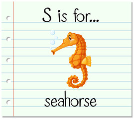 Flashcard letter S is for seahorse