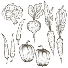 hand drawn vegetables icon set sketch in black lines