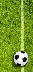 Panorama Fußball