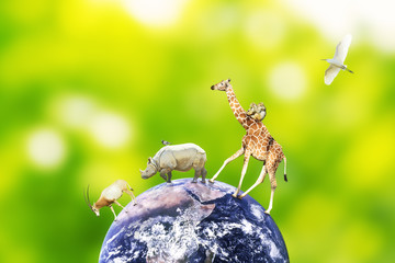 Concept of animal symbiosis on earth. Elements of this image furnished by NASA.