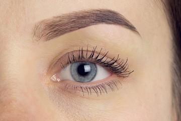 Perfect eyebrow