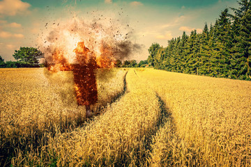 Scarecrow on fire on a field