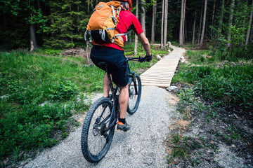 Mountain biker cycling riding in summer forest