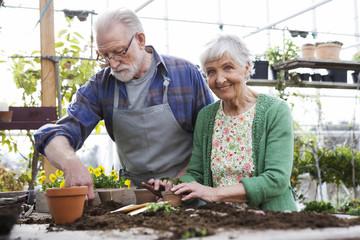An elderly scandinavian couple planting flowers, Sweden.