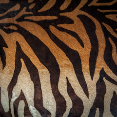 Abstract print animal seamless pattern. Zebra, tiger stripes. Striped repeating background texture. Fabric design