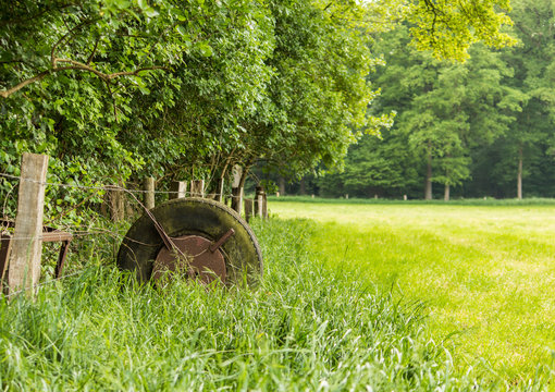 Old Tires on a green Field