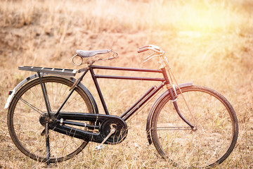 Vintage Old Bicycle with Summer grass field ; vintage filter sty