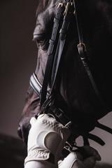 Jockey prepearing horse for the ride