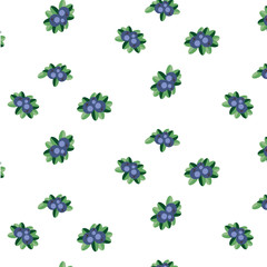 Blueberry vector pattern
